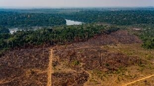 This photo from the state of Mato Grosso shows deforestation in the Amazon basin in the municipality of Colniza on August 29, 2019