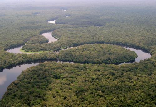 La rivière Lulilaka dans le parc national de la Salonga. Ce parc national, le plus grand de la République Démocratique du Congo, a été retiré de la liste du patrimoine mondial en péril par l'UNESCO, le 19 juillet 2021.