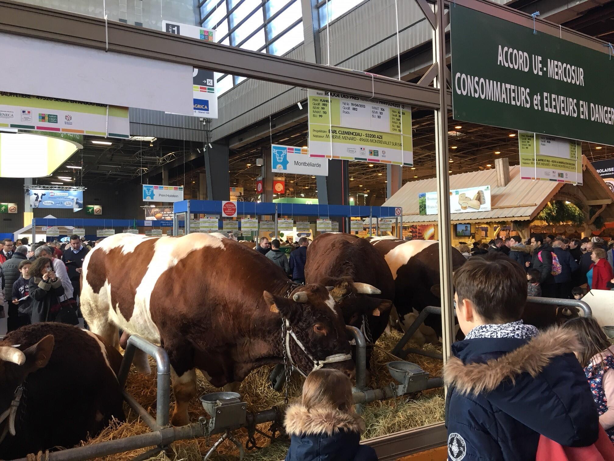 """Placa afirma que acordo com o Mercosul colocará o setor bovino francês """"em perigo""""."""
