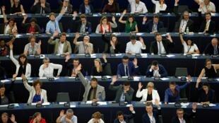 欧洲议会议员参与投票资料图片