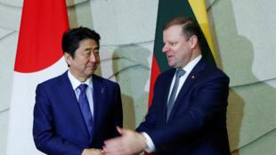 Les Premiers ministres japonais et lituanien Shinzo Abe (gauche) et Saulius Skvernelis (droite).