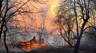 2020-04-06T131553Z_1610784106_RC21ZF9P40BI_RTRMADP_3_UKRAINE-CHERNOBYL-FIRE
