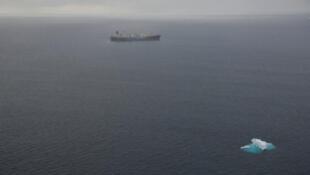 在南极海域的日本捕鲸调查船