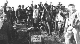 广西在文革期间发生了大规模 杀人吃人事件。