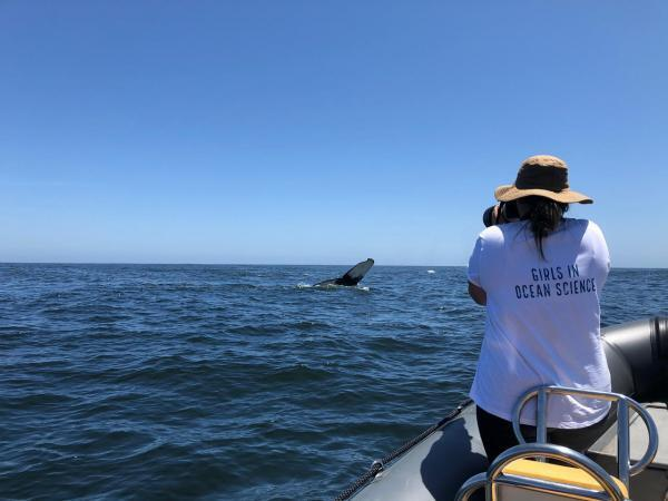 Sasha Dines collecting photographic data on humpback whales, South Africa