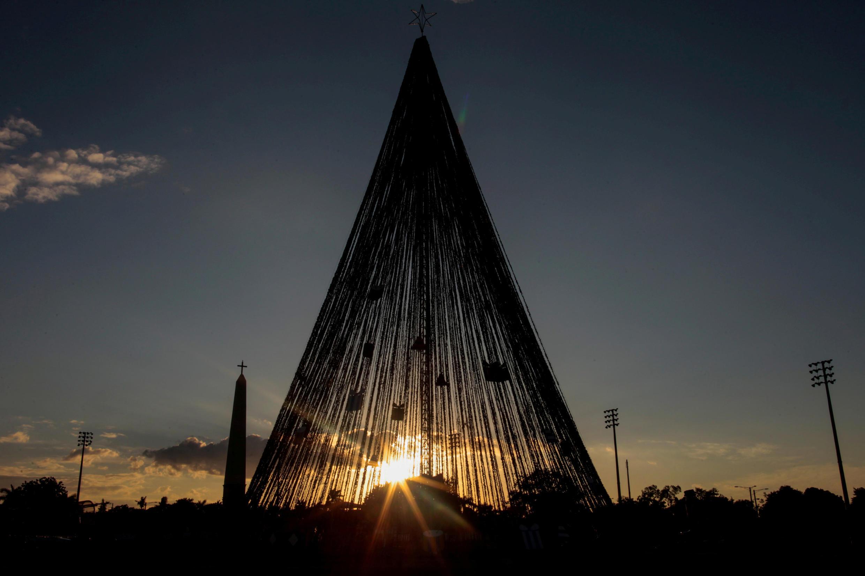 Рождественская ель на площади Иоанна-Павла II в Манагуа, Никарагуа.