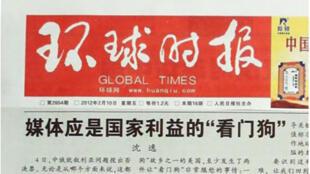 环球时报截图