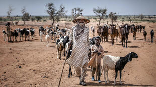 Niger Maradi Peul