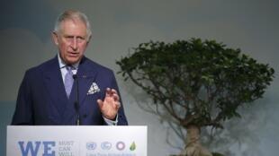 O príncipe Charles discursando na COP 21, elogia política de combate ao desmatamento no Brasil.