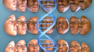 Vários laboratórios na Europa e nos Estados Unidos realizam testes de DNA que revelam povos e regiões de onde os indivíduos são originários.