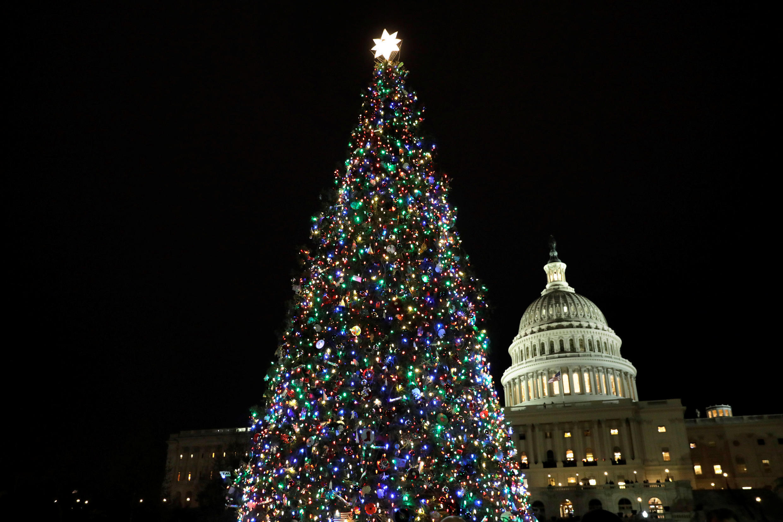 Рождественская ель в Вашингтоне, США.
