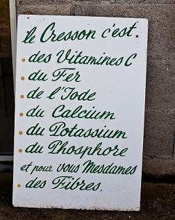 """Набор полезных свойств кресс-салата: """"витамин С, йод, кальций, калий, фосфор и волокнистость - специально для вас, дамы"""""""