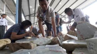 Des pierres de jade sont examinées après extraction d'une mine, en Birmanie.