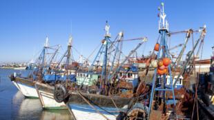 Bâteaux de pêche sur le port d'Essaouira, au Maroc.