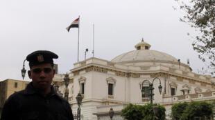 En 2010, le Parlement égyptien a adopté une loi interdisant le don d'organes à des étrangers.