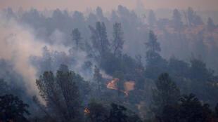 Californie été 2018: Ces incendies se multiplient sur fond de record de chaleur. Il y a quelques jours, la température à Palm Springs a dépassé les 49°C, un pic historique avait été enregistré dans la vallée de la Mort : 52,9°C.