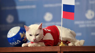 Aquiles vaticinó nuevamente un triunfo de Rusia.