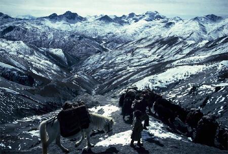 An image from Valli's High Himalaya Caravans series.