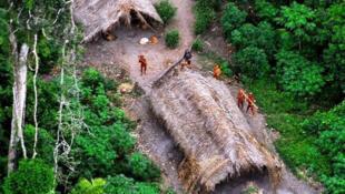 Ante el avance de madereros ilegales, se impone la protección de indígenas aislados voluntariamente e implica  a los gobiernos de Brasil y Perú.