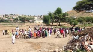 Livestock market at Borama, Somaliland