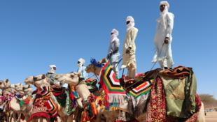 Spectacle de danse et parades de chameaux lors de la cérémonie d'ouverture du festival international des cultures sahariennes, Amdjarass (Ennedi Est, Tchad), le 30 mars 2019.