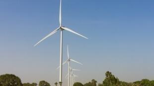 Le parc éolien de Taïba Ndiaye est le premier du genre au Sénégal.
