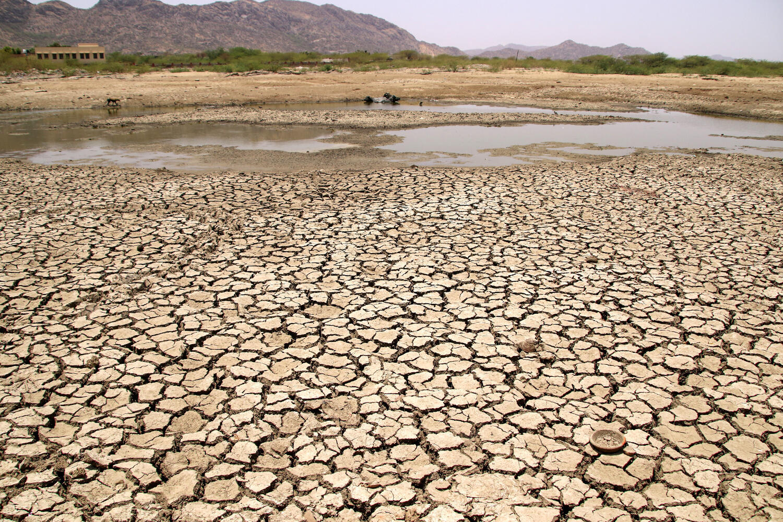 Um lago inteiro secou no norte da Índia devido ao forte calor registrado em 2 de junho de 2019.