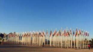 Signe reconnaissable à l'entrée de toutes les COP, l'alignement des drapeaux des pays participants.