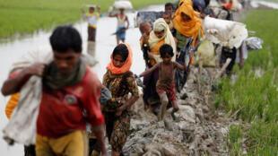 Milhares de refugiados rohingyas atravessam a fronteira com Bangladesh diariamente.