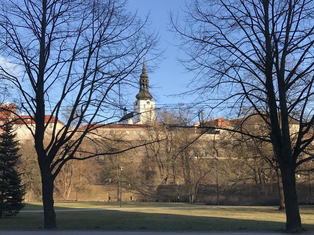 Tallinn, la capitale estonienne, encore sous le choc de la percée des populistes