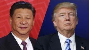 中美兩國首腦習近平與特朗普資料圖片