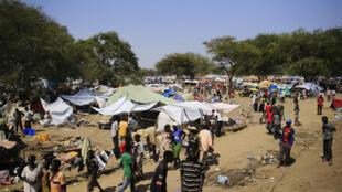 Un camp de déplacés de l'ONU à Bor (à 180 km de la capitale Juba), le 25 décembre 2013.