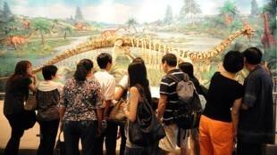 Costela de dinossauro tem tecido mole mais antigo já encontrado
