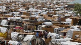 Wani sansanin 'yan gudun hijirar Najeriya da ke Gamboru Ngala a jihar Borno.