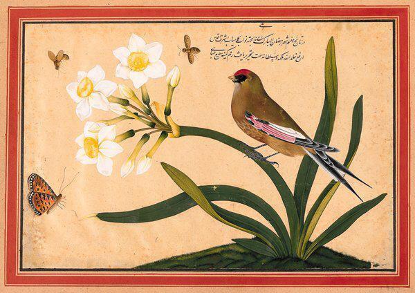 سهره و شاخه نرگس، اثر شفیع عباسی- اصفهان ۱۶۵۲ میلادی