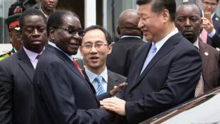 今年1月九日,中國官媒報道,習近平還與穆加貝夜談如何推進十大合作計畫。