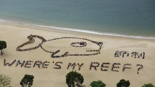 Trên 800 học sinh, giáo viên và người tình nguyện xếp thành hình một con cá trên bãi biển tại Hồng Kông, nhân ngày Đại dương cho trẻ em, 23/04/2015.
