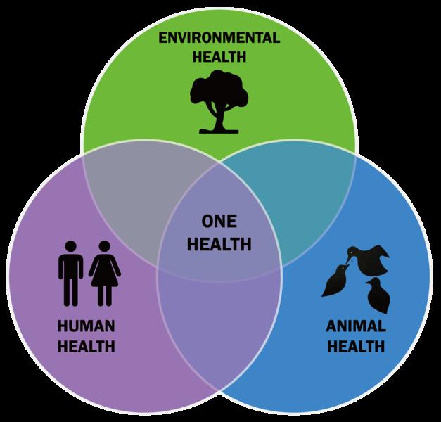 Một biểu tượng của tiếp cận One Health - Một Sức khỏe Duy nhất (thống nhất ba lĩnh vực Sức khỏe con người, Sức khỏe thú vật, Sức khỏe môi trường)