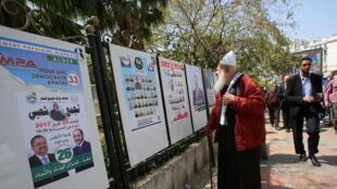 Un électeur devant les affiches de la campagne des législatives.