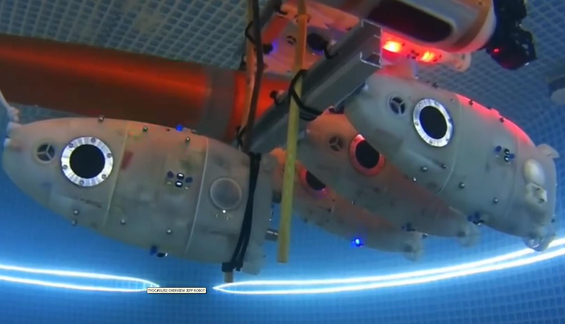 Cocoro est le nom d'un essaim de robots aquatiques qui se déplace sous l'eau.