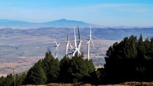 30 éoliennes dans le paysage des collines de Ngong, à environ 25 km au sud-ouest de Nairobi, sont détenues et gérées par la principale société de production d'électricité du Kenya, KenGen.