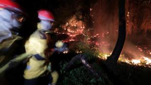 Incêndio florestal em Castagniers perto da cidade de Nice estava quase sob controle na manhéa desta terça-feira, 18 de julho de 2017.