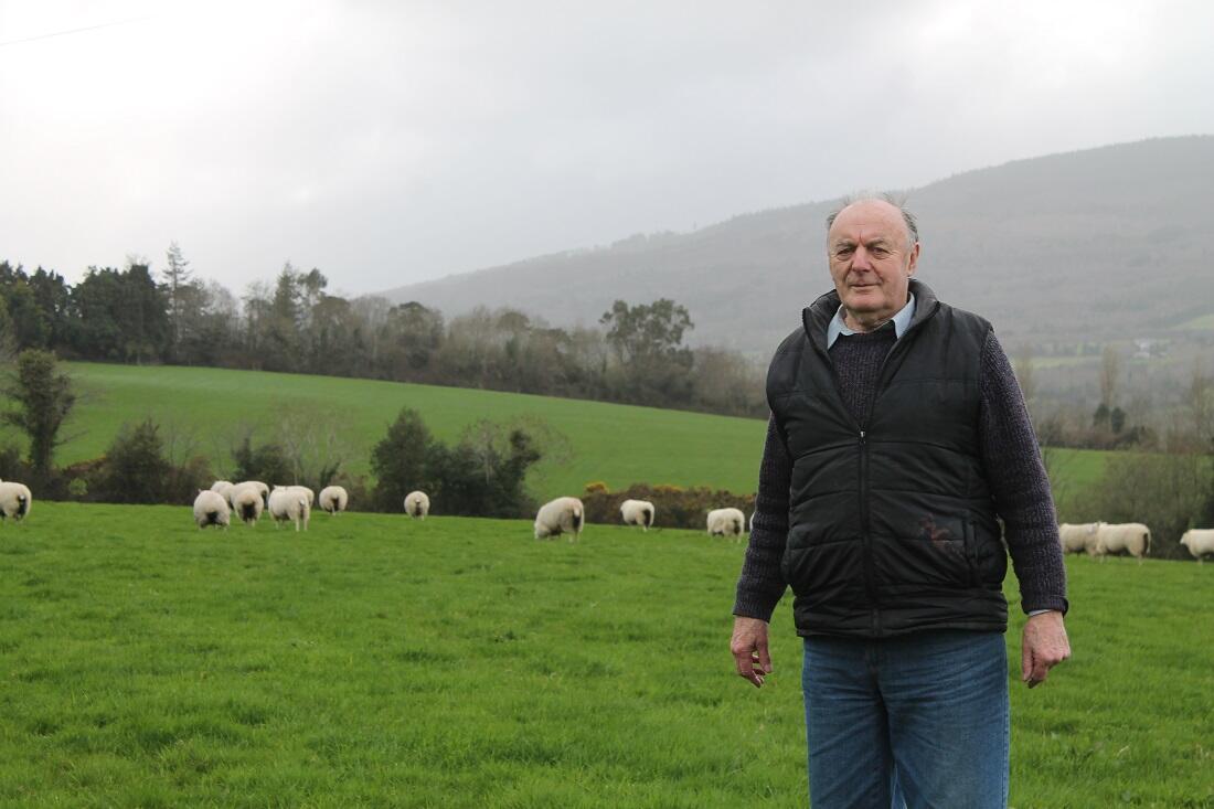 Jim Mason, biochimiste à la retraite et éleveur de brebis à Rathnew, comté de Wicklow.