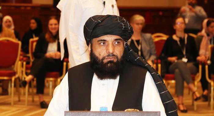 سهیل شاهین، سخنگوی دفتر سیاسی گروه طالبان در قطر