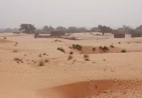 Paysage sahélien un jour d'Harmattan au Niger.