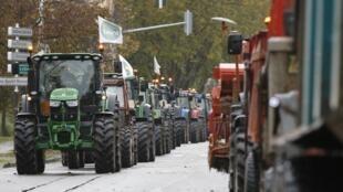 Selon la FNSEA, plus 35 000 agriculteurs ont manifesté dans les villes françaises ce mercredi 5 novembre. Ici à Strasbourg.
