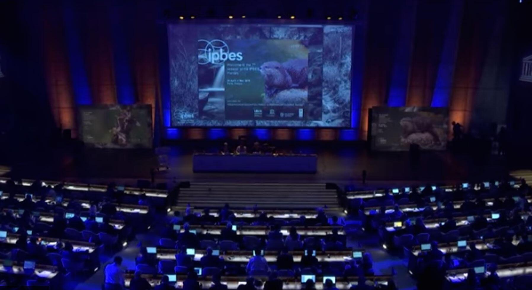 Cientistas e diplomatas de mais de 130 países se reúnem a partir desta segunda-feira na sede da Unesco, aqui em Paris, para discutir a adoção da primeira avaliação mundial de ecossistemas.