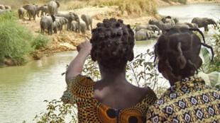 Burkina Faso. Programme éducatif Enfants et Eléphants.