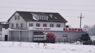 Une vue de l'abattoir Elkopol, à Kalinowo, dans le nord-est de la Pologne.