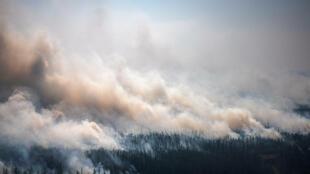 incendie sibérie
